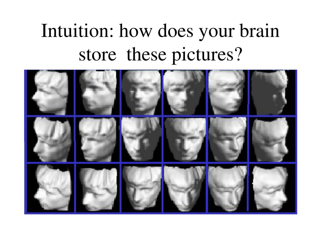 Intuition: how does your brain store  these pictures?