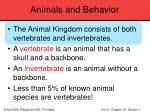 animals and behavior60