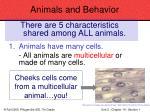 animals and behavior61