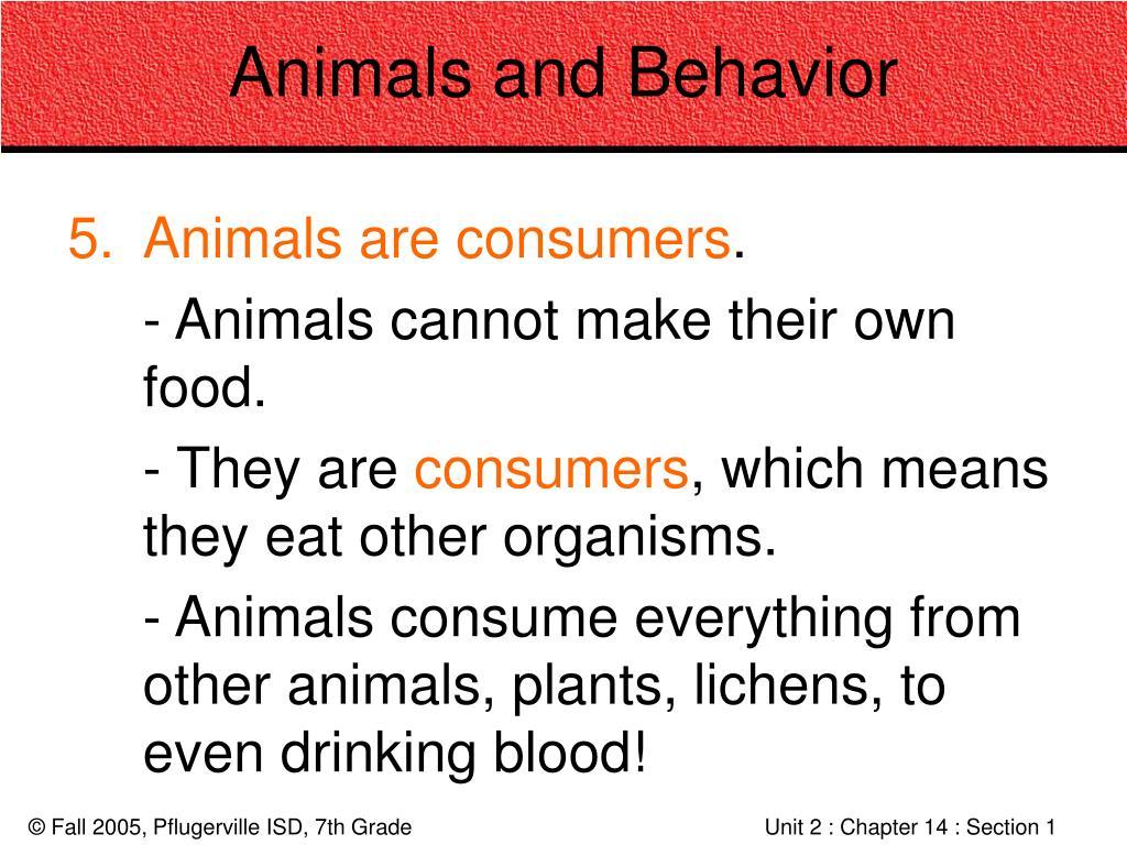 Animals and Behavior