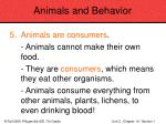 animals and behavior68