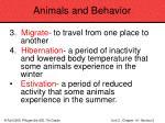 animals and behavior73