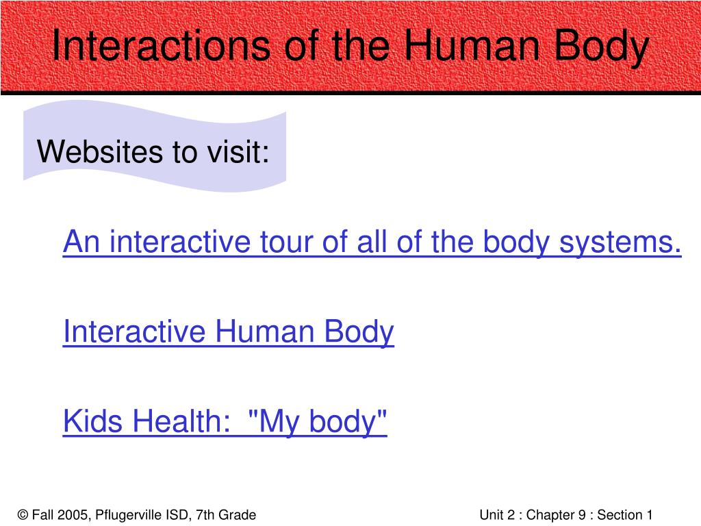 Interactions of the Human Body