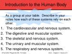 introduction to the human body18