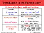 introduction to the human body8