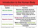 introduction to the human body9