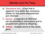 mendel and his peas25