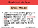mendel and his peas32