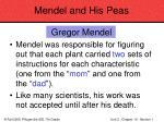 mendel and his peas34
