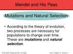 mendel and his peas43