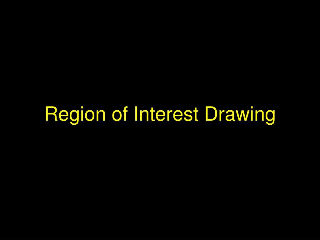Region of Interest Drawing