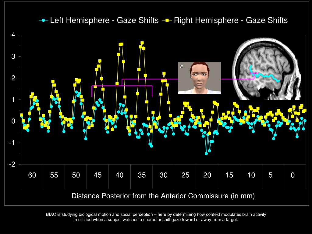 BIAC is studying biological motion and social perception – here by determining how context modulates brain activity in elicited when a subject watches a character shift gaze toward or away from a target.