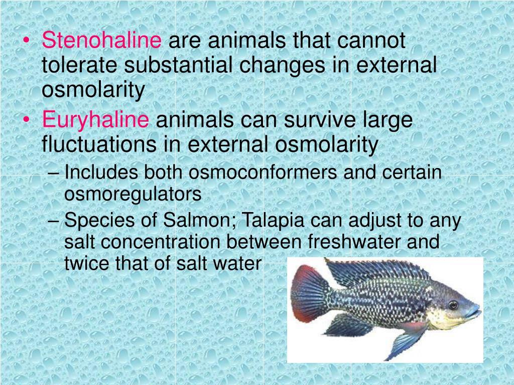 Stenohaline