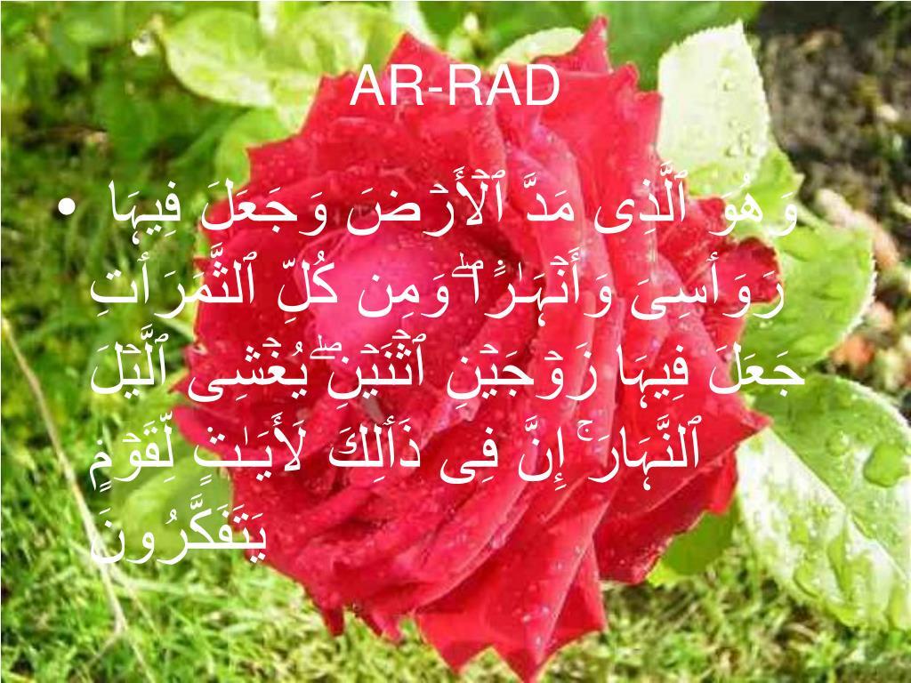 AR-RAD