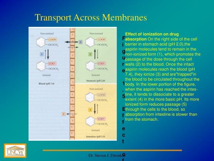Transport Across Membranes