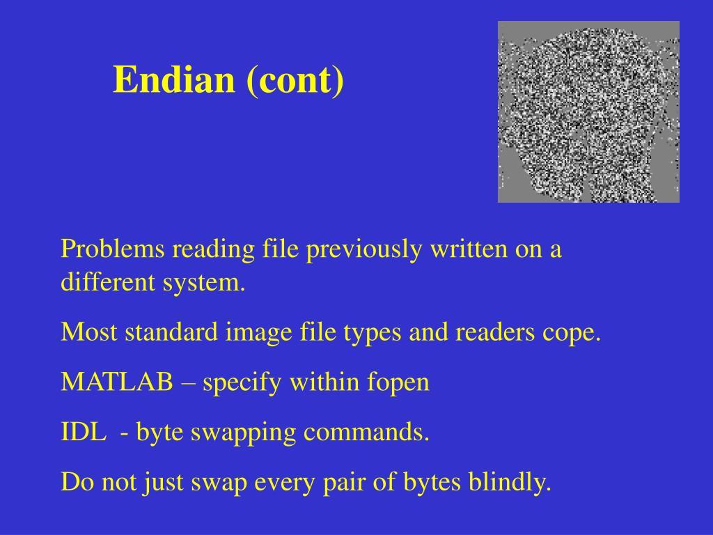 Endian (cont)