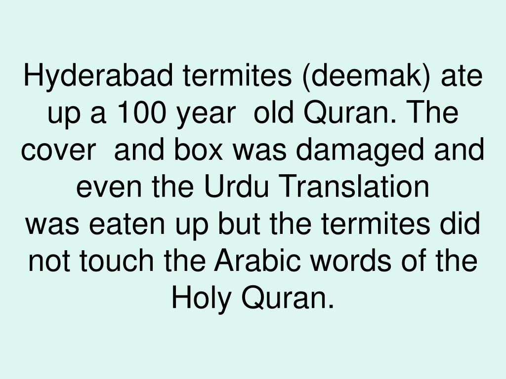 Hyderabad termites (deemak) ate up a 100 year  old Quran. The cover  and box was damaged and even the Urdu Translation was eaten up but the termites did not touch the Arabic words of the Holy Quran.