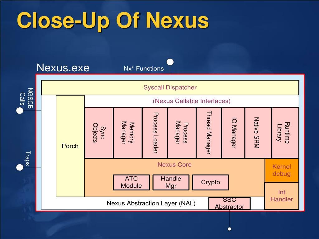 Close-Up Of Nexus