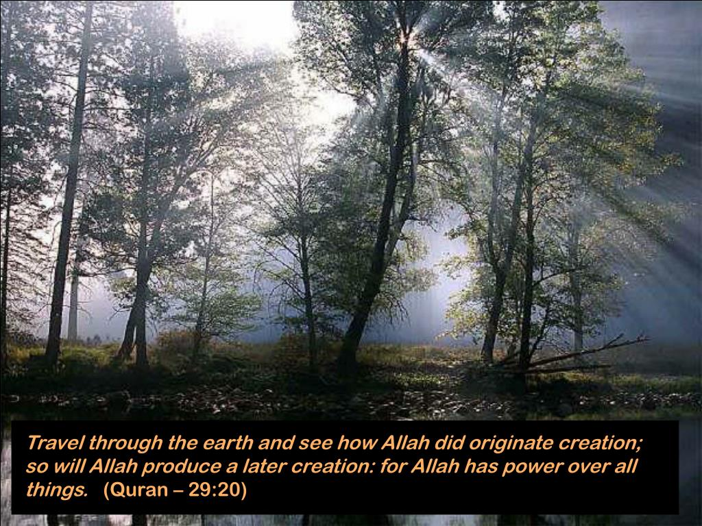 Travel through the earth and see how Allah did originate creation; so will Allah produce a later creation: for Allah has power over all things.