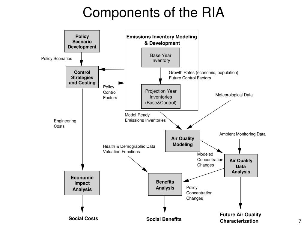 Components of the RIA
