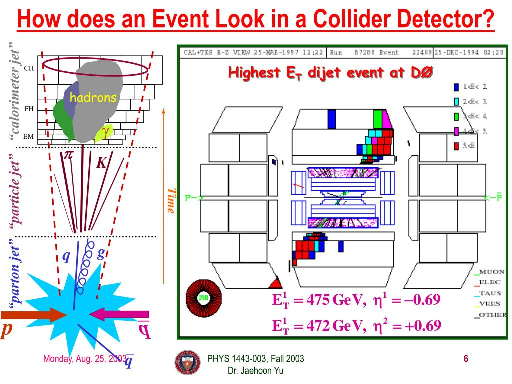 How does an Event Look in a Collider Detector?