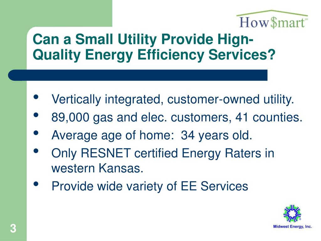 Can a Small Utility Provide High-Quality Energy Efficiency Services?