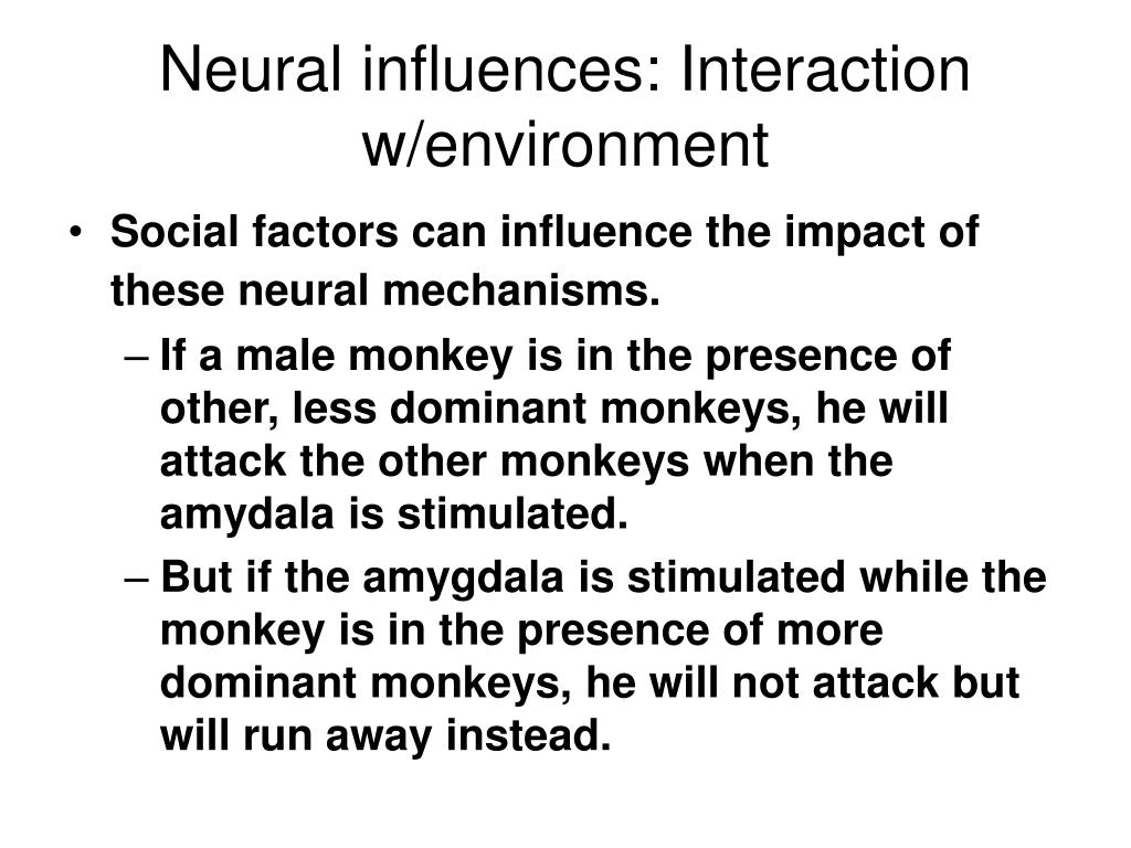 Neural influences: Interaction w/environment