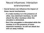 neural influences interaction w environment