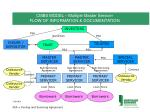 cmbs model multiple master servicer flow of information documentation