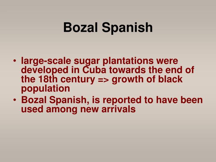 Bozal Spanish
