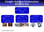 cooper standard automotive who we are