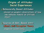 origins of attitudes social experiences38