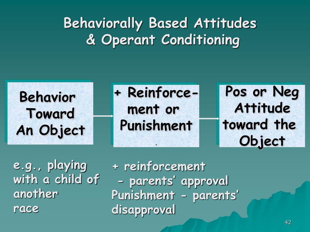 Behaviorally Based Attitudes