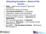 attracting investors some of the issues