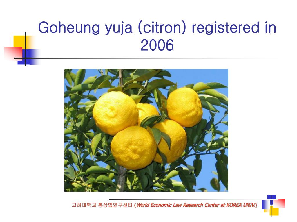 Goheung yuja (citron) registered in 2006