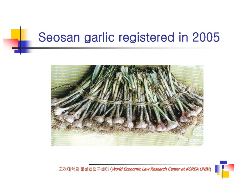 Seosan garlic registered in 2005
