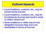 cultural impacts28