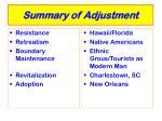 summary of adjustment