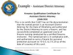 example assistant district attorney13