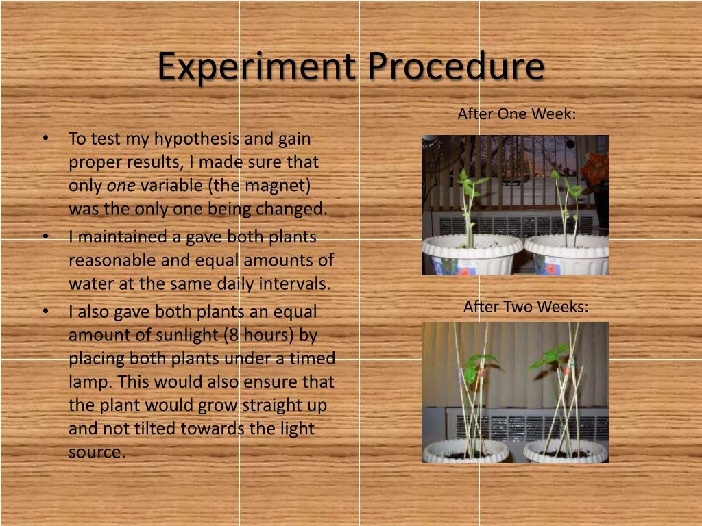Experiment Procedure