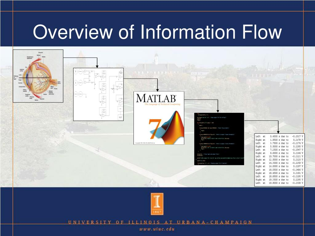 Overview of Information Flow