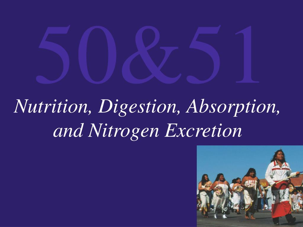 Nutrition, Digestion, Absorption, and Nitrogen Excretion