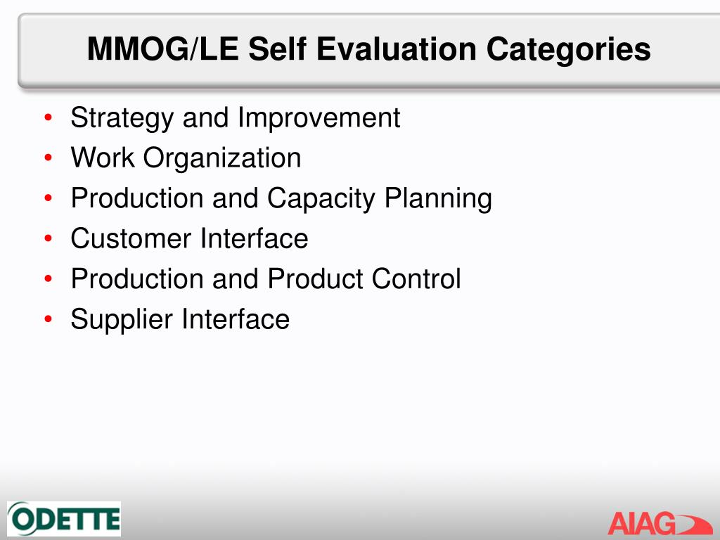 MMOG/LE Self Evaluation Categories