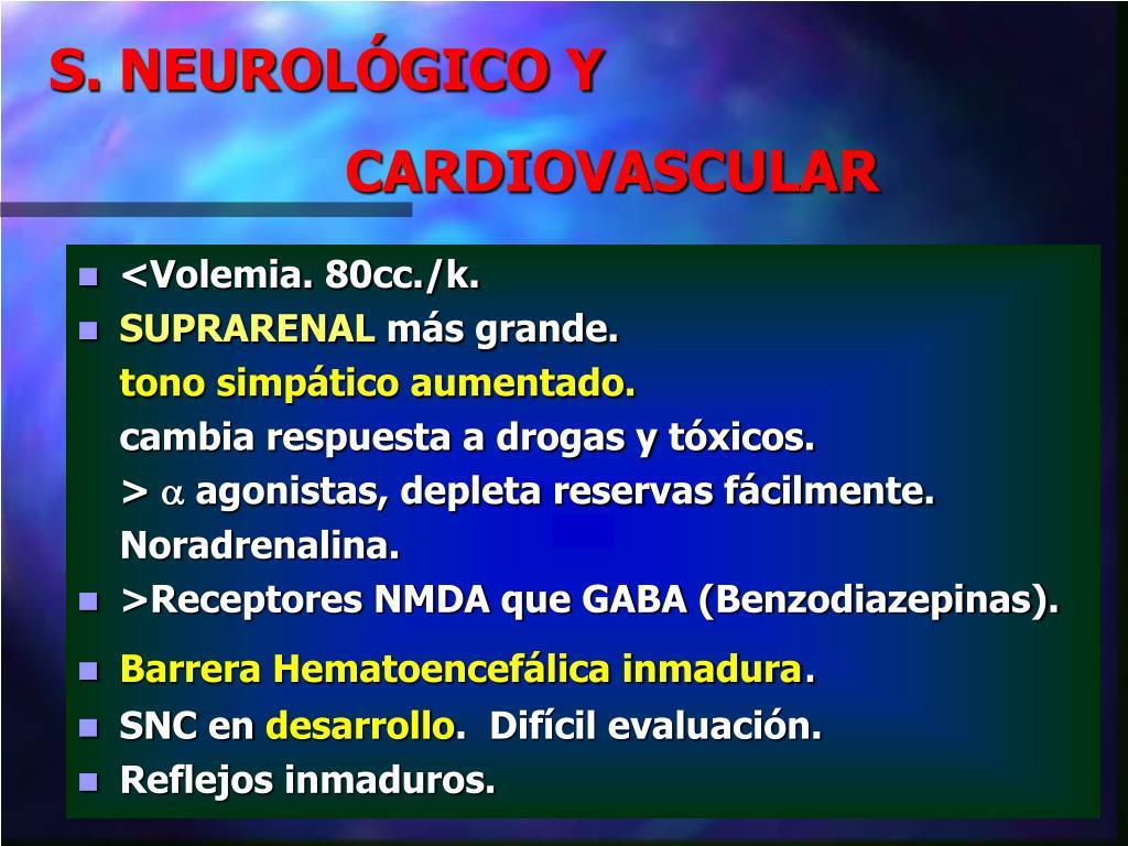 S. NEUROLÓGICO Y
