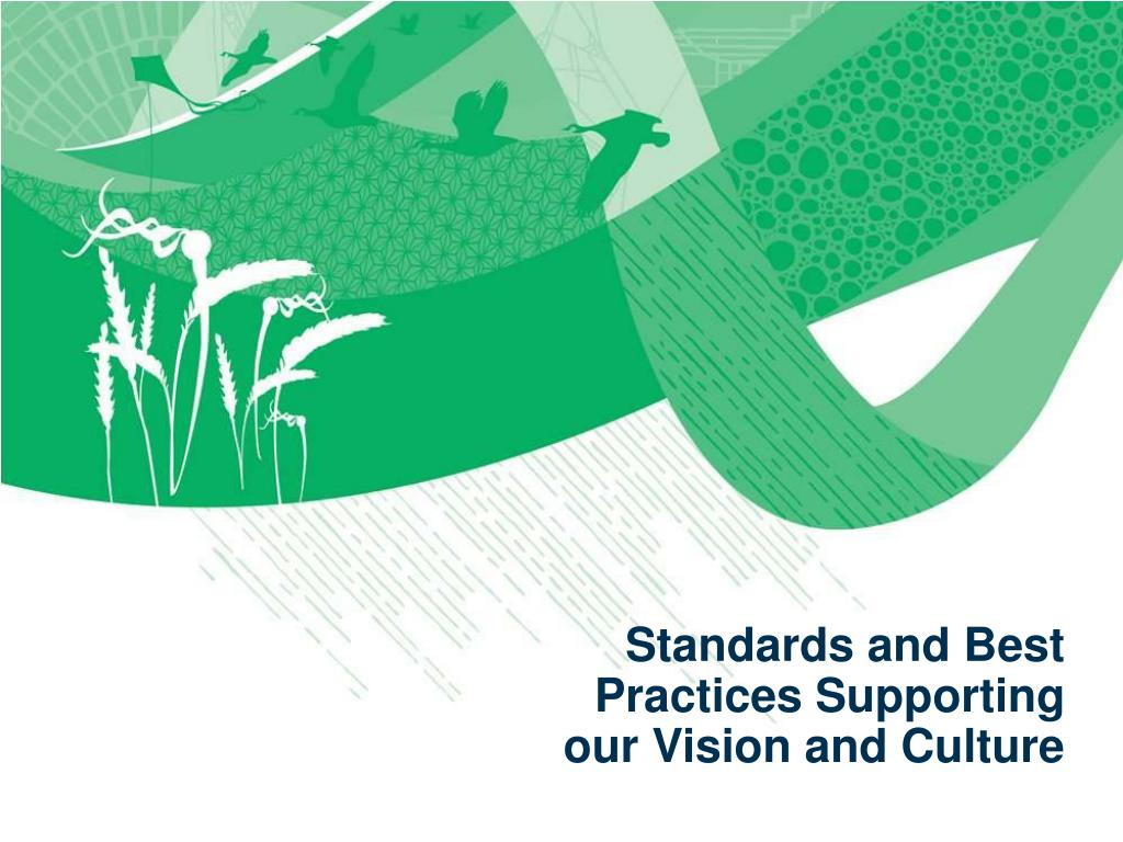 Standards and Best Practices Supporting our Vision and Culture