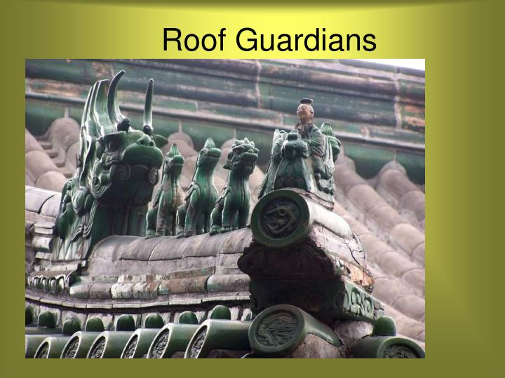 Roof Guardians