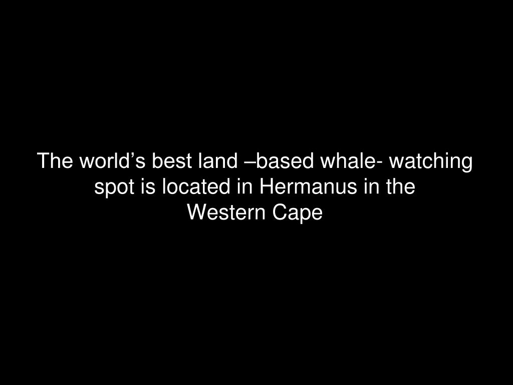 The world's best land –based whale- watching spot is located in Hermanus in the