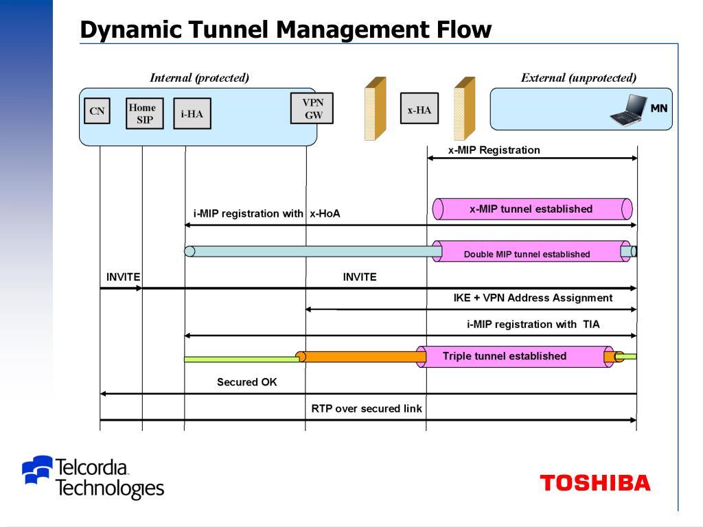 Dynamic Tunnel Management Flow