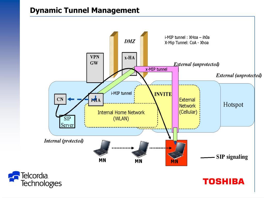 Dynamic Tunnel Management