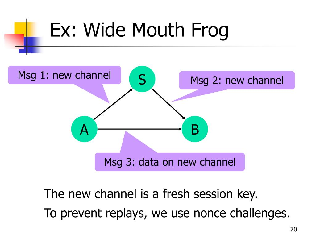 Ex: Wide Mouth Frog